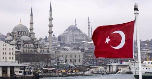 زراعه شعر واللحيه في اسطنبول