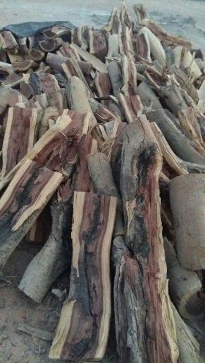 حطب اللبيع سمر شرط  nيواجد انواع الحطب