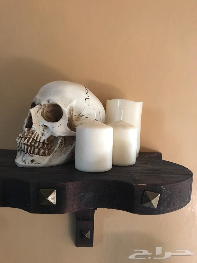 للبيع مجسم جمجمة انسان