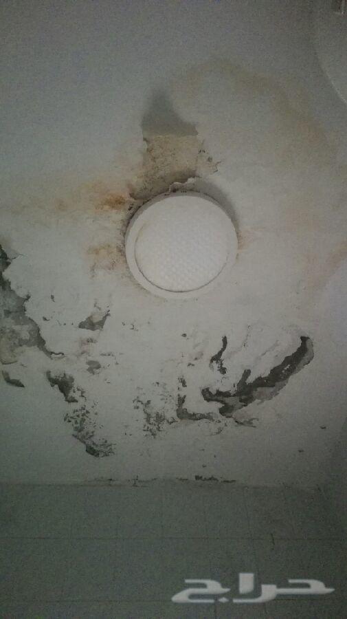 كشف تسريب عزل غسيل تنظيف خزانات رش مبيد بمكه