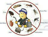 شركة خدمات تنظيف منازل مجالس ومكافحة حشرات
