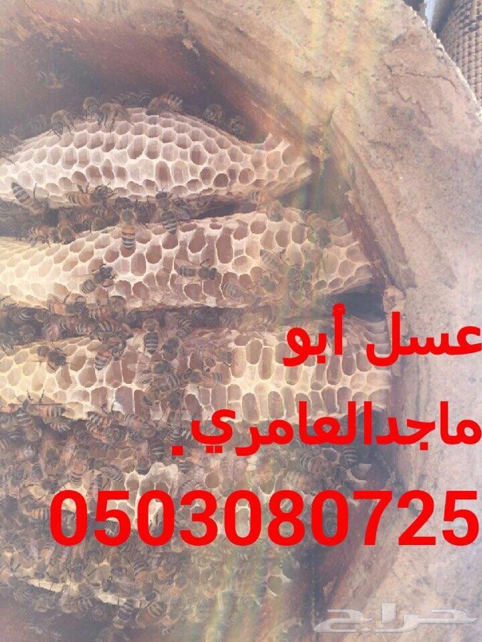 عسل سدر بلدي اصلي و مضمون وعلى شرط