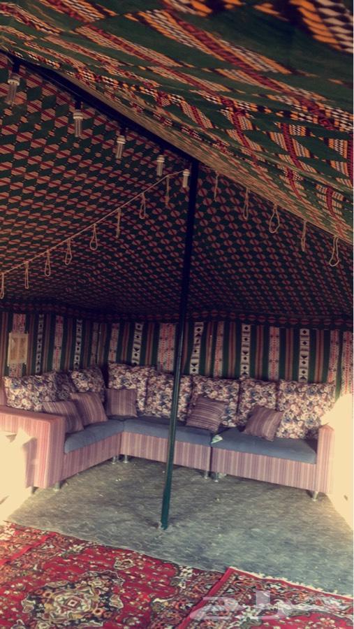 مخيم للايجار شماال الرياض