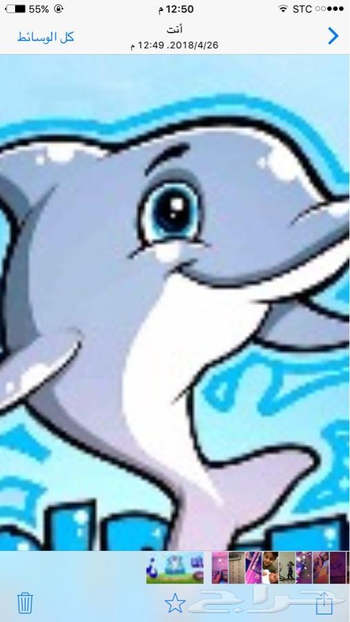 شاليهات الدلفين ترحب بكم