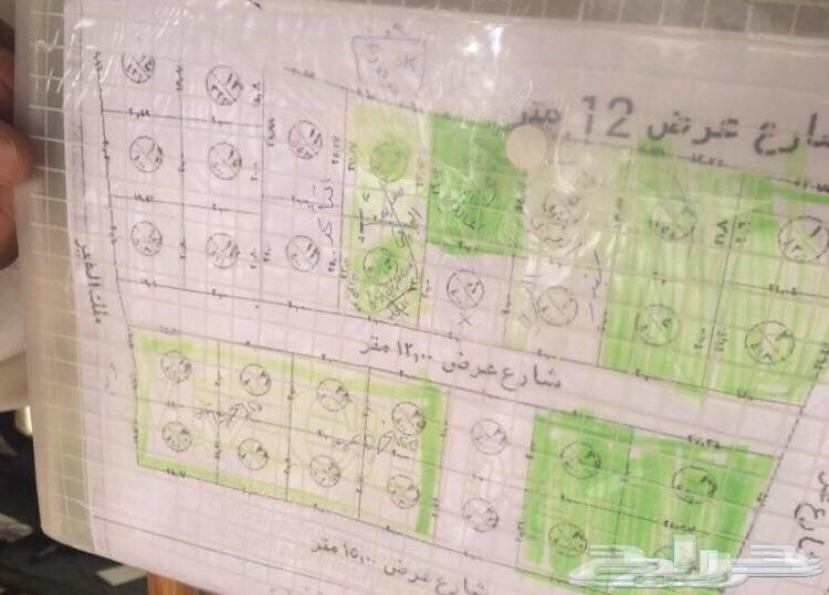 اراضي بالطايف عشيرة ب25 الف