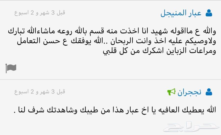 عوده مشروطه اسعار جمله