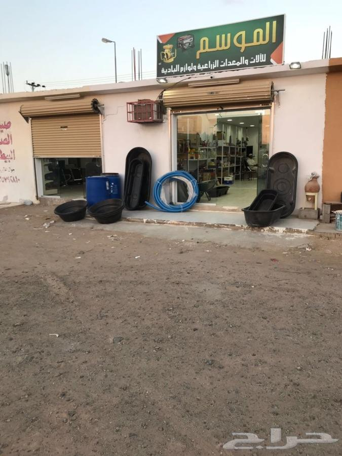 لوازم واعلاف طيور في محافظة عفيف