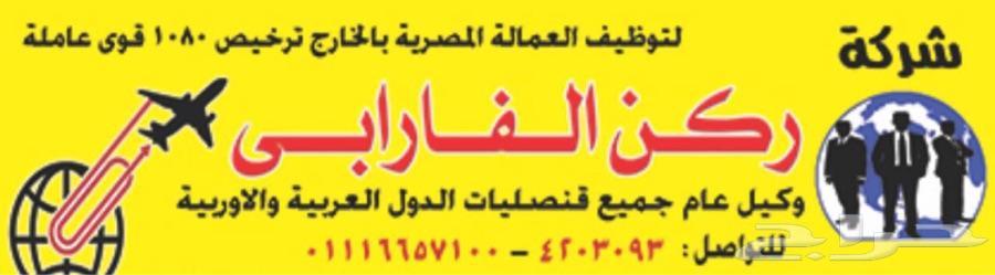 استقدم عمالتك شركة مصريه بالقاهره