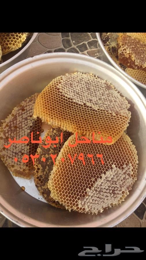 »  عسل طلحه جديد
