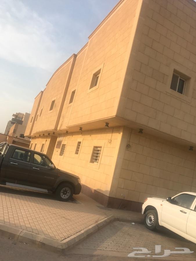 »  الرياض - للايجار عمارة مساحة