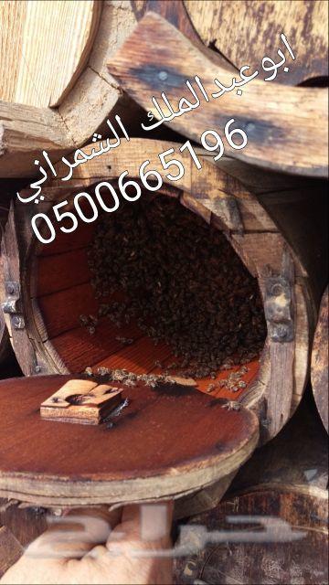 عسل عسل عسل عسل اصلي وطبيعي ذمة ومختبر((سدر))