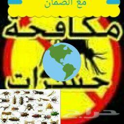 شركة تنظيف مجالس فلل شقق مكافحة حشرات مسابح خ