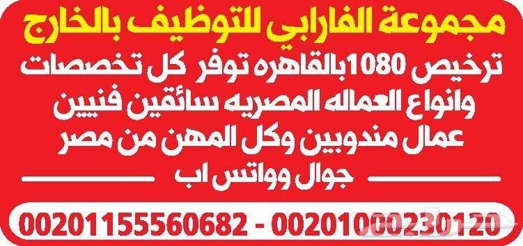 لدينا من مصر كل انواع العماله المصريه