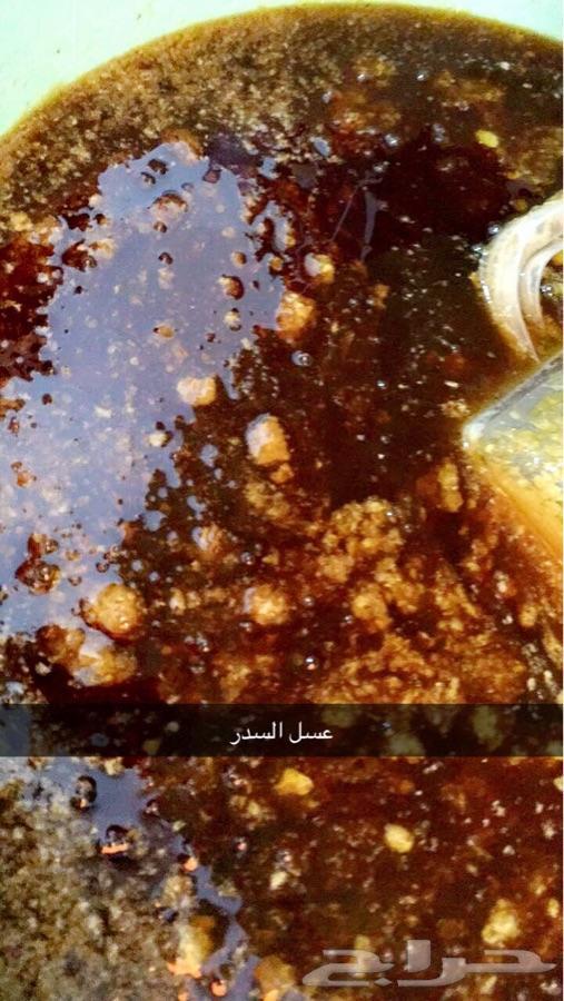 عسل سدر اصلي مضمون على المختبر قطفه1440