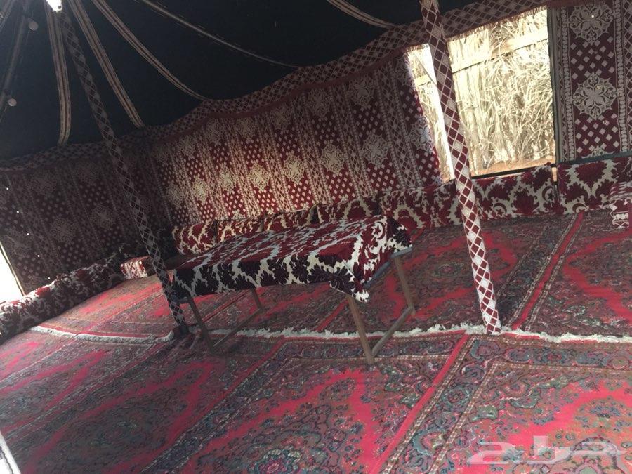 مخيم للإيجار