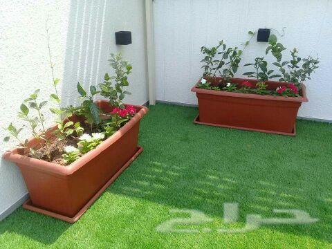 »  تنسيق حدائق