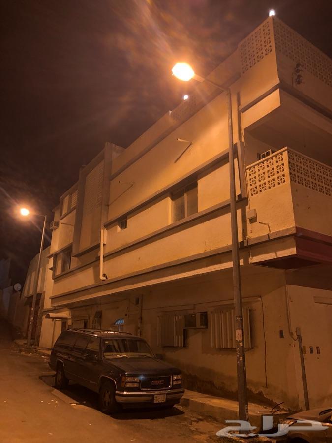 »  الطائف حى قروى شارع محمد بن عبدالوهاب