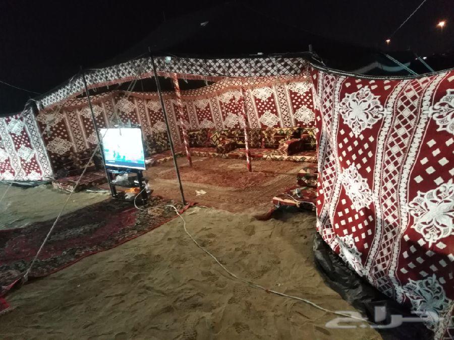 مخيم البادية (VIP) للإيجار