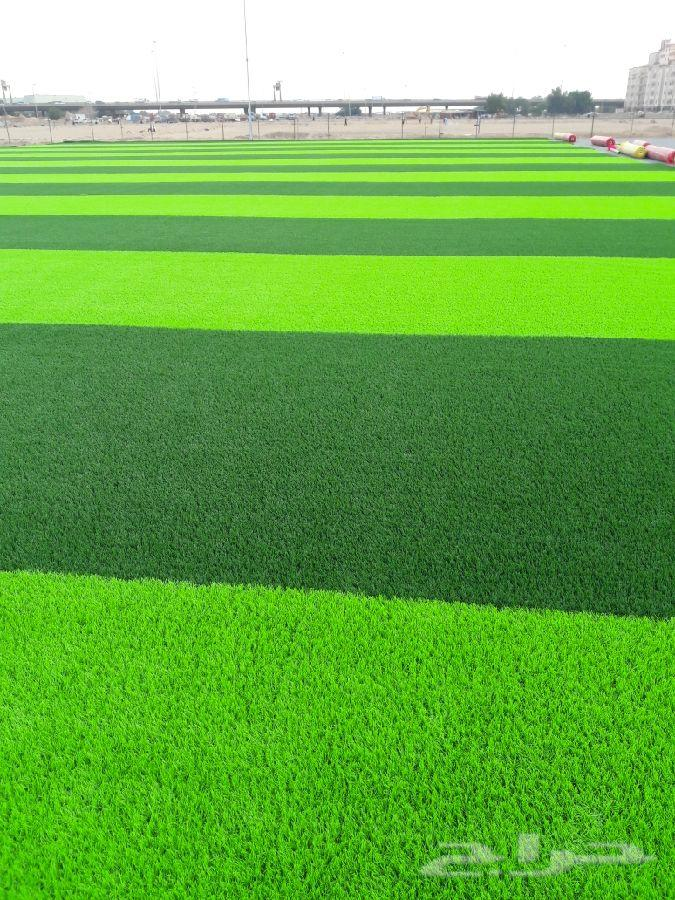 عروض خاصة العشب الصناعي
