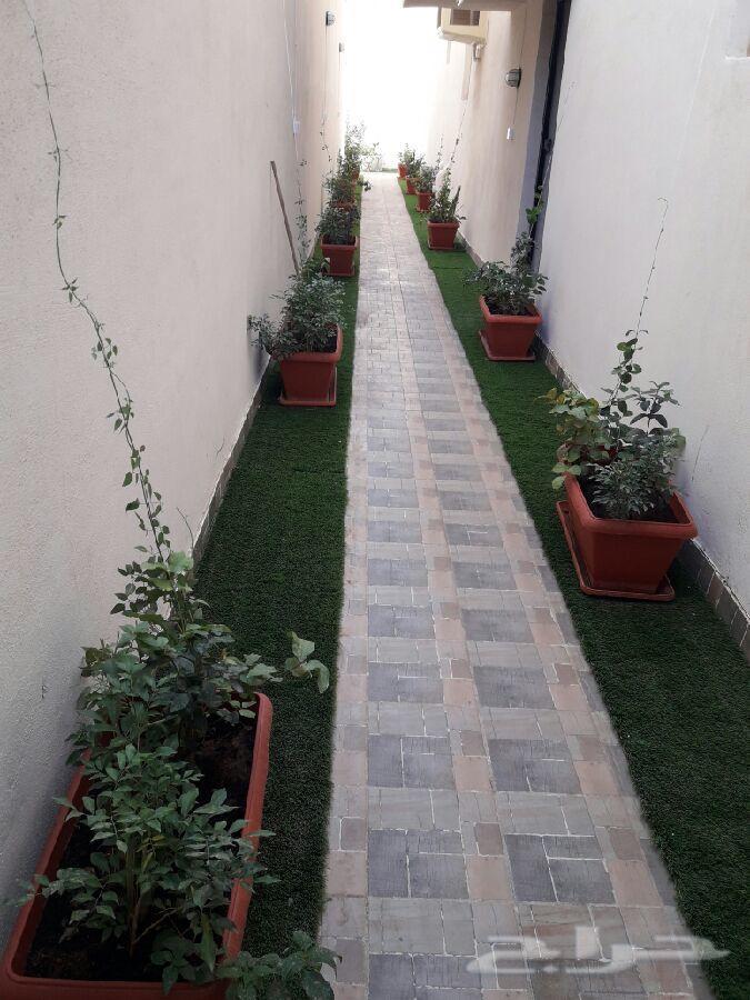 عسب صناعي ونجيله طبيعي تنسيق حدائق وفلل وورود
