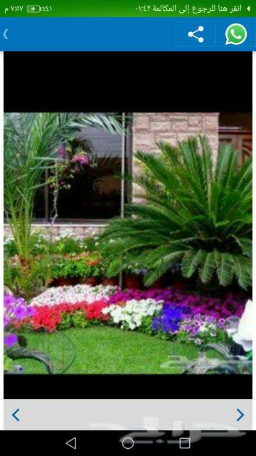 ديكورات زراعية وتنسيق الحدائق