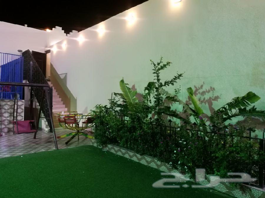 استراحة الجنادرية حي الفيصل جدة