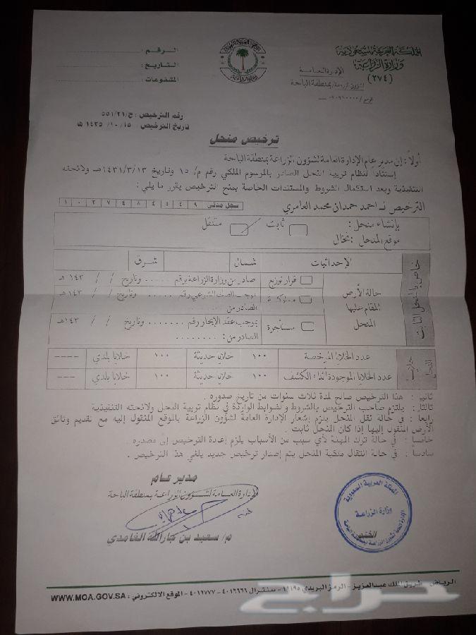 عسل سدر  وسمره ومجرا بلدي وشرط وعلي الفحص