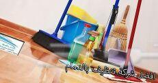 شركة مكافحة حشرات وتسليك مجارى وتنظيف منازل