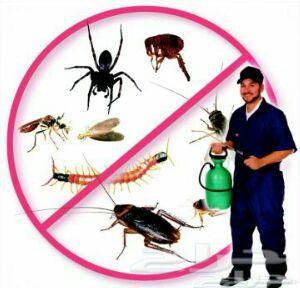 شركةتنظيف خزانات بجدةمكافحةحشرات بجدة