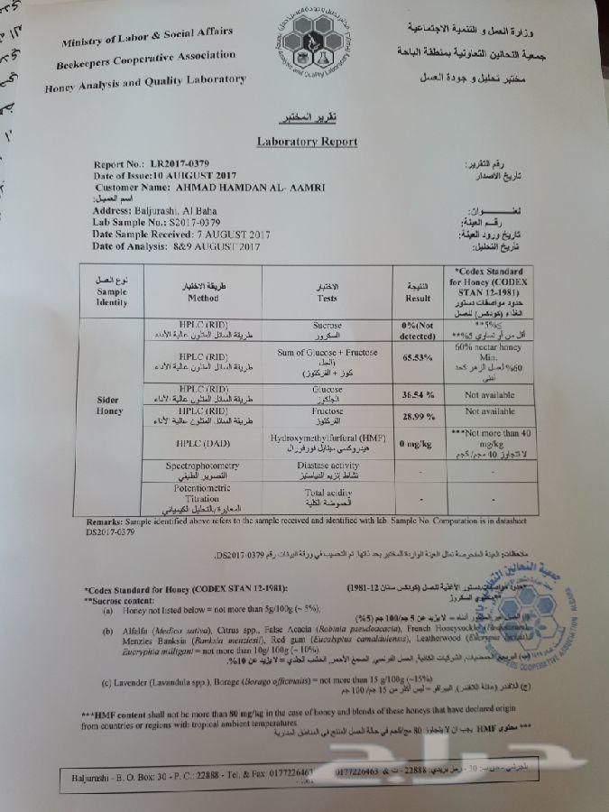 عسل سدر اصلي وشرط وعلي الفحص سدر ألجنوب بلدي