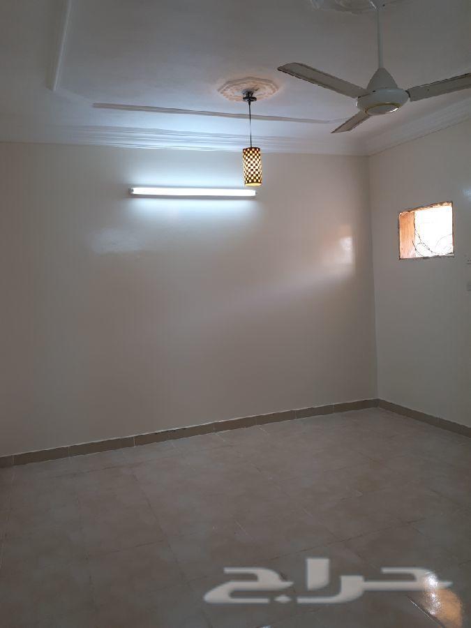 شقة للاجار بأملج