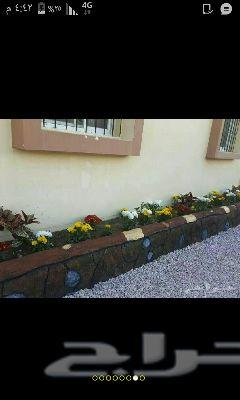 تنسيق حدائق أبو مراد