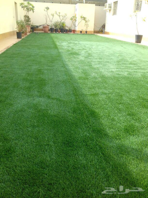 عشب صناعي وطبيعى وتنسيق الحدائق