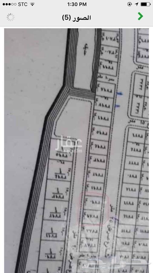 ارضين للبيع بحي عريض جنب بعض السوم 810