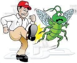 شركة رش مبيدات صراصير فئران نمل بق برص