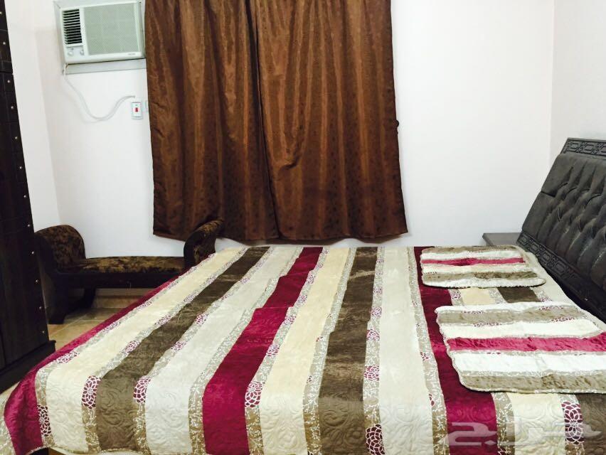 شقة 5 غرف نظيفة جدا جدا الواديين سنوي