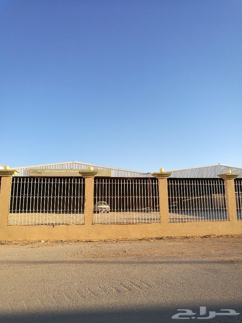 معرض سيارات في عرعر استثمار للبيع