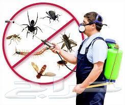 مكافحه حشرات رش مبيدات رش دفان قبل صبه النظاف