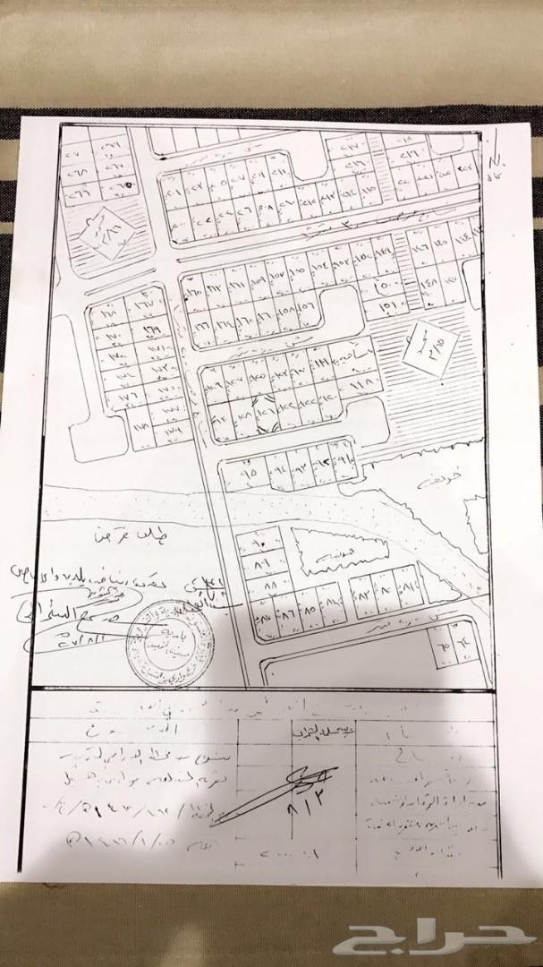 ارض للبيع في وادي بن هشبل حي المداوس