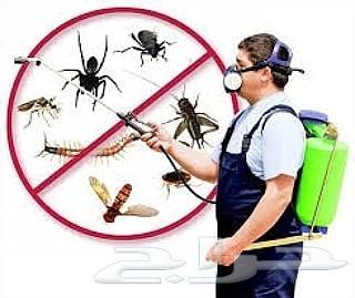 مكافحه حشرات رش مبيدات صراصير نمل فيران بق