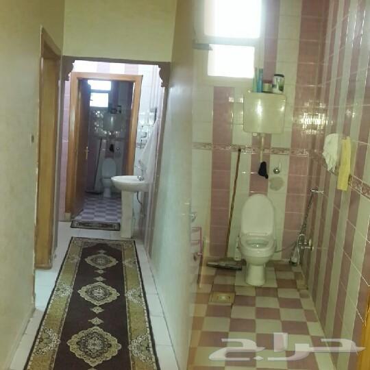 شقة عوائل حى الشف ممتازة مع عفش