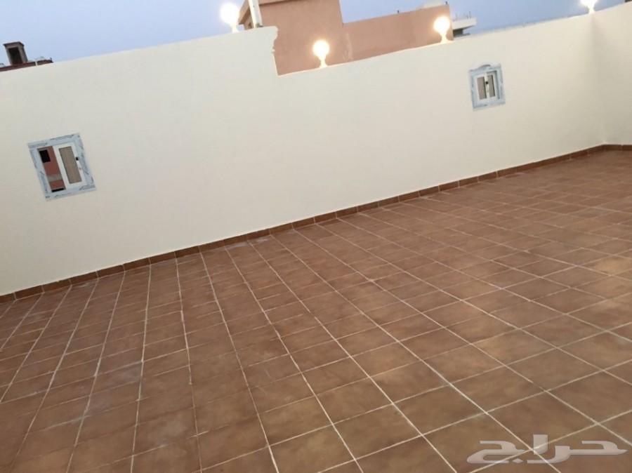 »  ملحق روف للبيع 5 غرف فقط ب 350 الف