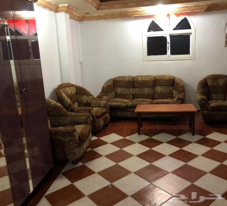 شقة للإيجار مفروشة شهري 1500 ريال
