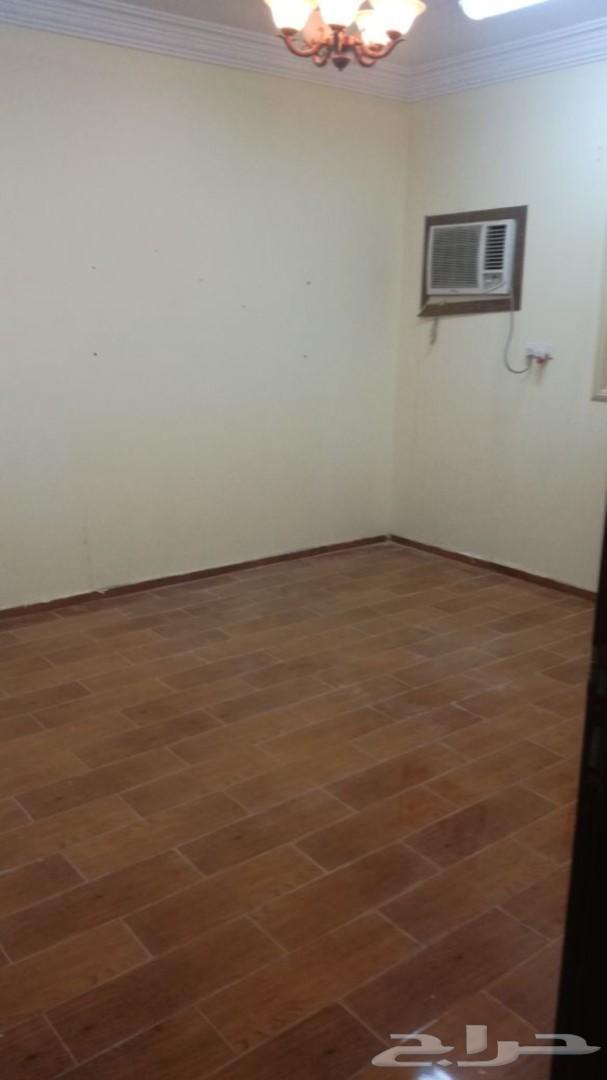 شقة فاخرة غرفتين وصالة بمحايل عسير