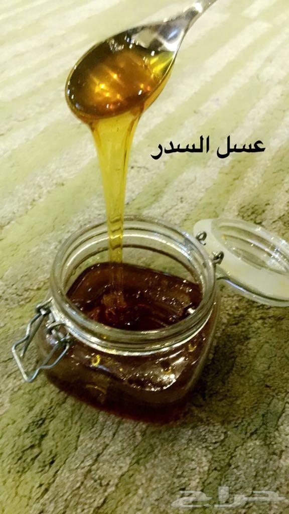 مملكه العسل الجديد قطفه السدر