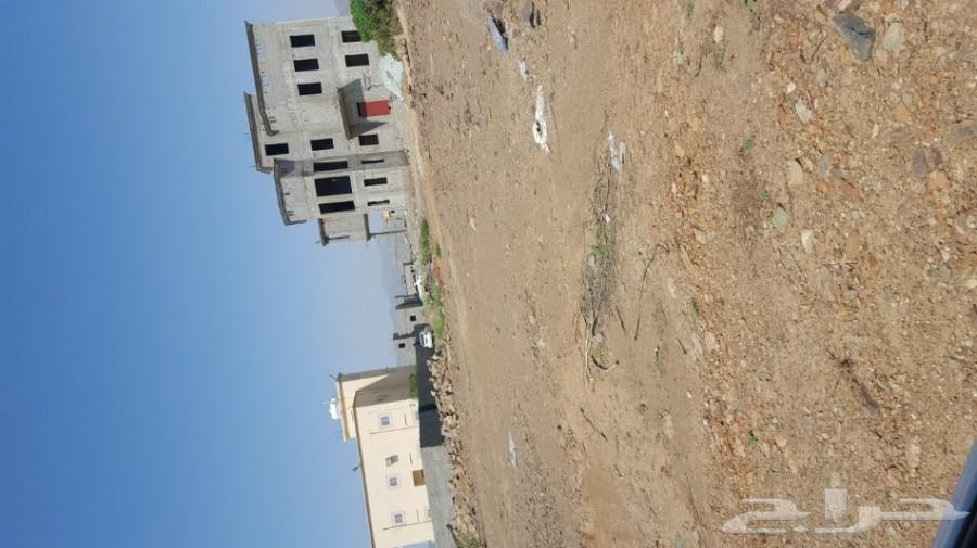 قطعتين ارض للبيع في حي الدف بمحايل عسير