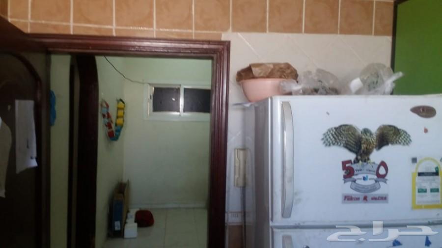 شقة عوائل 3 وصالة ومطبخ كبير راكب وغاز مجانا