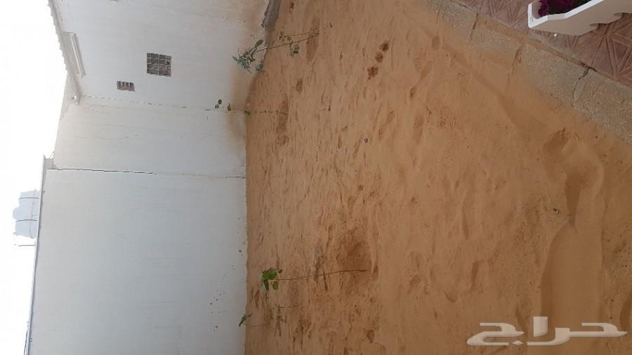 استراحة شباب غرفتين حمام مطبخ مفروشه الف ريال