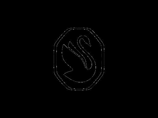 Logo Swarovski 2021