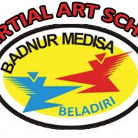 Badnur Medisa